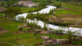 Phander is a very fertile and peaceful village in district Ghizer of Gilgit-Baltistan Pakistan